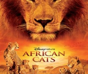 Win an Admit 2 Pass to See AFRICAN CATS!