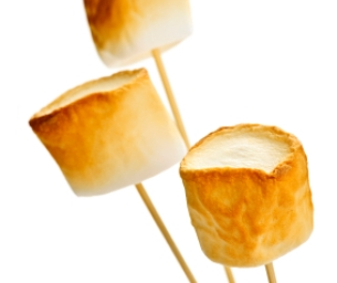 National Toasted Marshmallow Day!