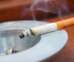 Nicotine's Effect on Adolescents' Developing Brain