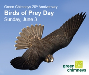 GIVEAWAY: Birds of Prey Day at Green Chimneys