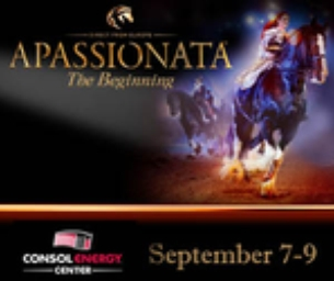 APASSIONATA Is Coming to Consol