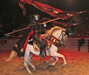 Macaroni Kid Day at MEDIEVAL TIMES