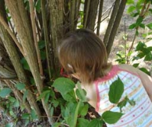 Geocaching: Treasure Hunt in Your Backyard!