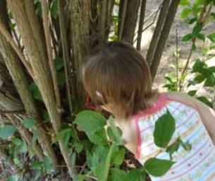 Geocaching: Treasure Hunt in Your Backyard!