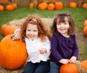 Colorado Pumpkin Patches and Corn Mazes