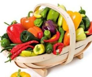 'Tis the Season for Your Bountiful Harvest!