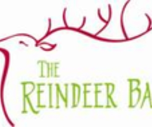 Reindeer Ball & online Holiday Auction