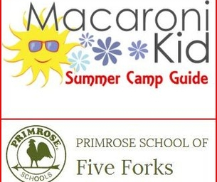 Summer Camp Guide: Primrose School of Five Forks