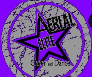 Aerial Elite Summer Camp