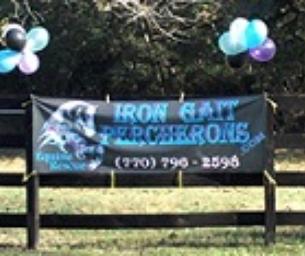 Iron Gait Percheron Family Fun Day Open House
