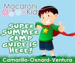 2013 SUMMER CAMP GUIDE