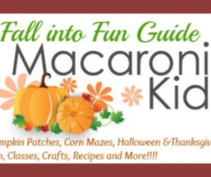 2013 FALL INTO FUN GUIDE~HALLOWEEN TO THANKSGIVING