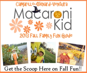 INTRODUCING FALL FUN 2013