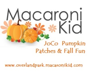 Pumpkin Patches & Fall Fun in and Around JoCo