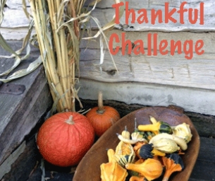 "A 30-day ""Thankful Challenge"""