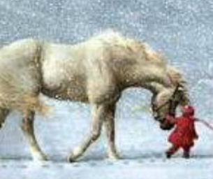 MOUNTAIN DELL EQUESTRIAN~GIVE THE GIFT OF LOVE FOR HORSES