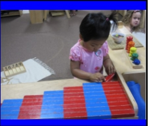 Maple Tree Montessori Academy in Brighton, Michigan