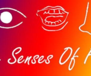5 Senses of Fun