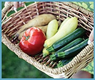 Raw Recipes for Summer's Bounty.  Thanks Mother Nature!