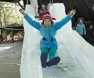 Ice Carving Week Comes to the Bronx Zoo!