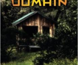 Holiday Gift Idea for Teens:The Cobalt Domain by Darla Roselle