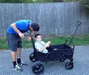 Holiday Gift Idea!!  Gogo Babyz Wagon Stroller