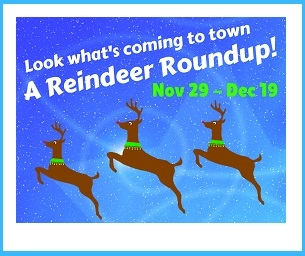 Find the Reindeer and Be Entered to Win Over $900 in Prizes!