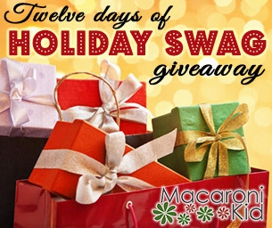 12 Days of Holiday Swag Giveaway ~ Enter to win prizes!