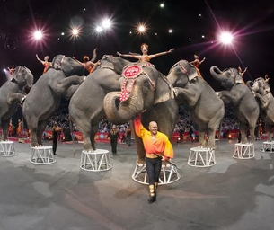 WIN 4-TIX: Ringling Bros. and Barnum & Bailey Circus XTREME!!