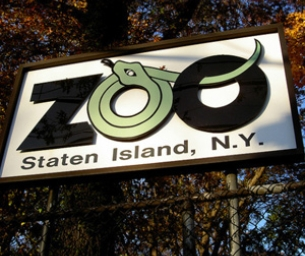 Zoo Scavenger Hunt & Trivia
