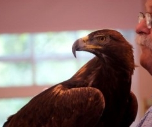 Brand New Exhibit: Animal Secrets at the Springfield Museums
