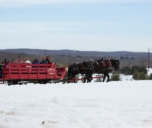 Lyman Orchard's 43rd Annual Winterfest ~ THIS WEEKEND