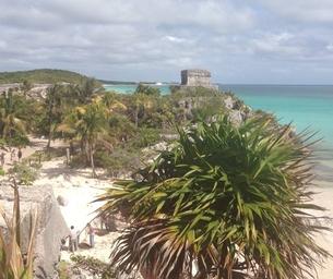 Gorgeous Playa Del Carmen