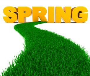 """5 Activities to Help Your Family """"Spring Forward"""""""