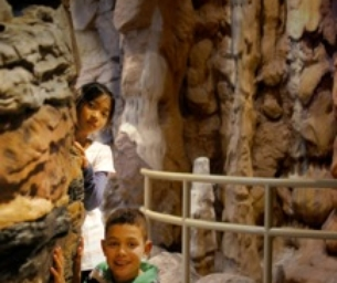 Win a Family Four Pack to Fernbank NatureQuest!