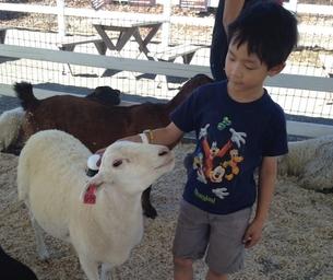 MK Giveaway Winner! Visit Danny's Farm