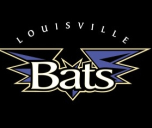 **Giveaway** Tickets to the Bats!