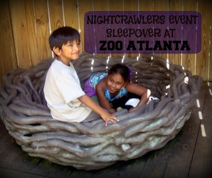 NIGHTCRAWLERS: Zoo Sleepover Event
