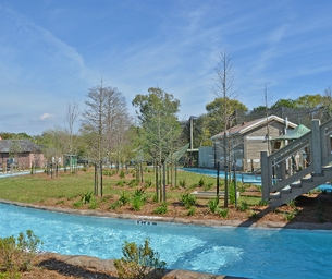 Get Ready for Gator Run - The New Lazy River at Audubon Zoo