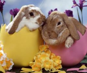 Easter Events Around Acadiana