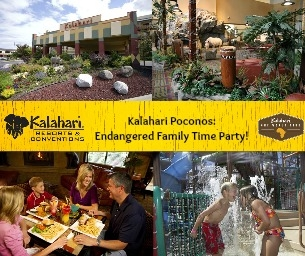 Celebrate Family Time at our Kalahari Party & Book Swap!