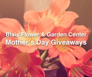 Mother's Day Giveaways