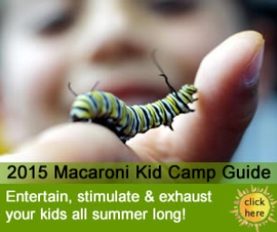 Plan Your Summer With the 2015 Summer Camp Guide