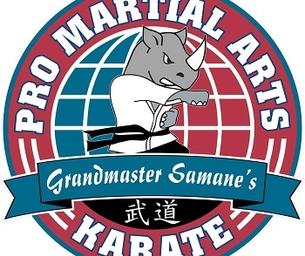 CAMP CHARACTER AT PRO MARTIAL ARTS