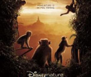 Movie Review: Monkey Kingdom