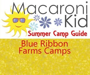 Blue Ribbon Farms Camp