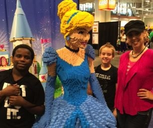 Here's What We Say About LEGO® Fest!