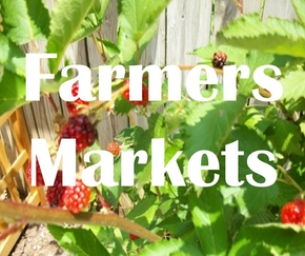 Farmers' Markets of Wake County - Harvest Time