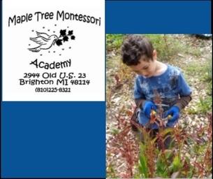 Maple Tree Montessori, Quality Camp Programs