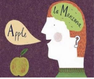 The Bilingual Brain (Sponsored)